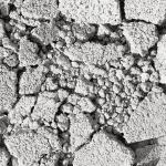 Crushed Concrete awaiting disposal